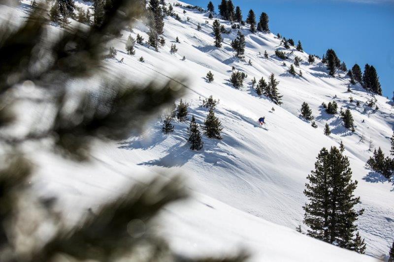 USA Skiing