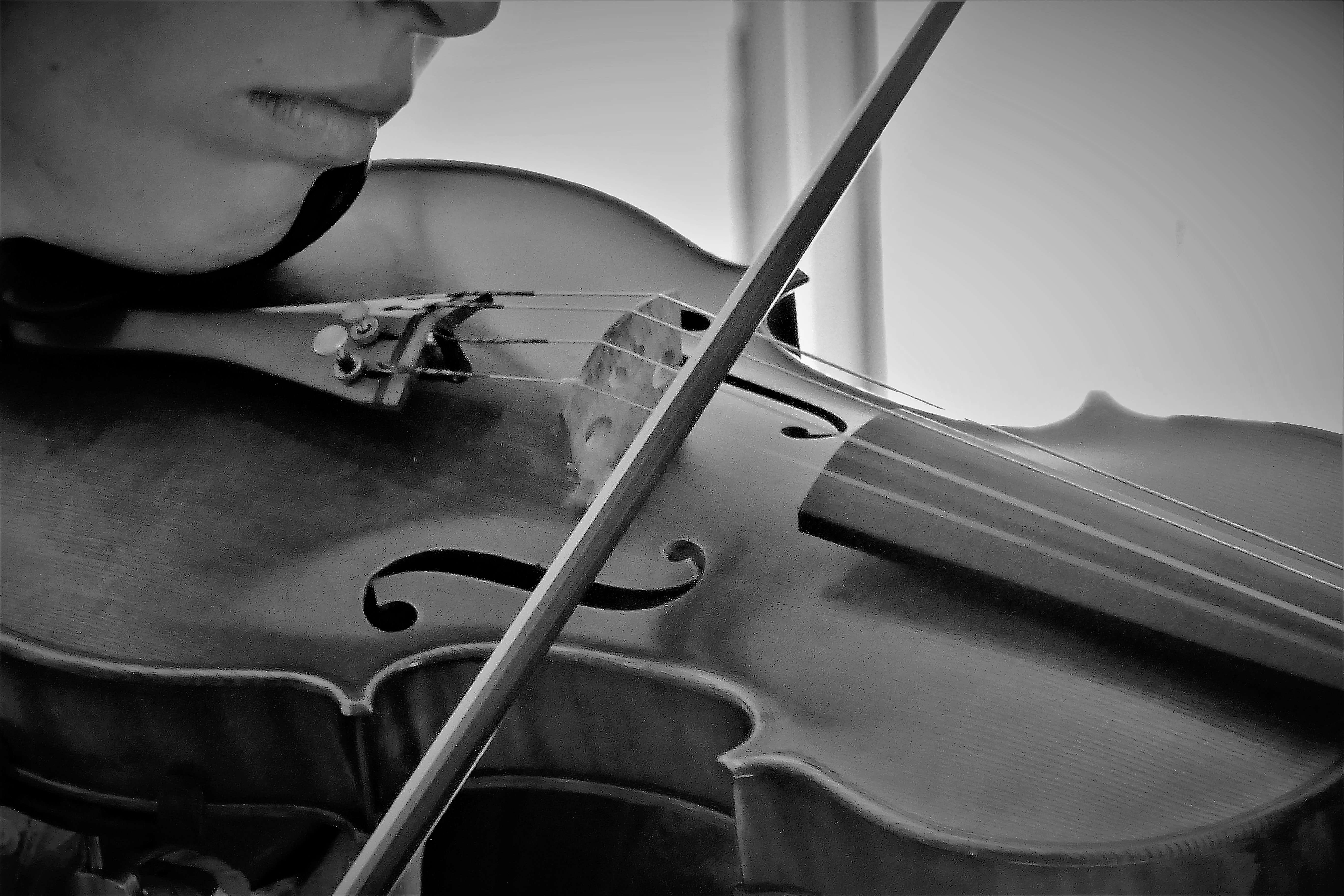 Cultural Harmony Through Music