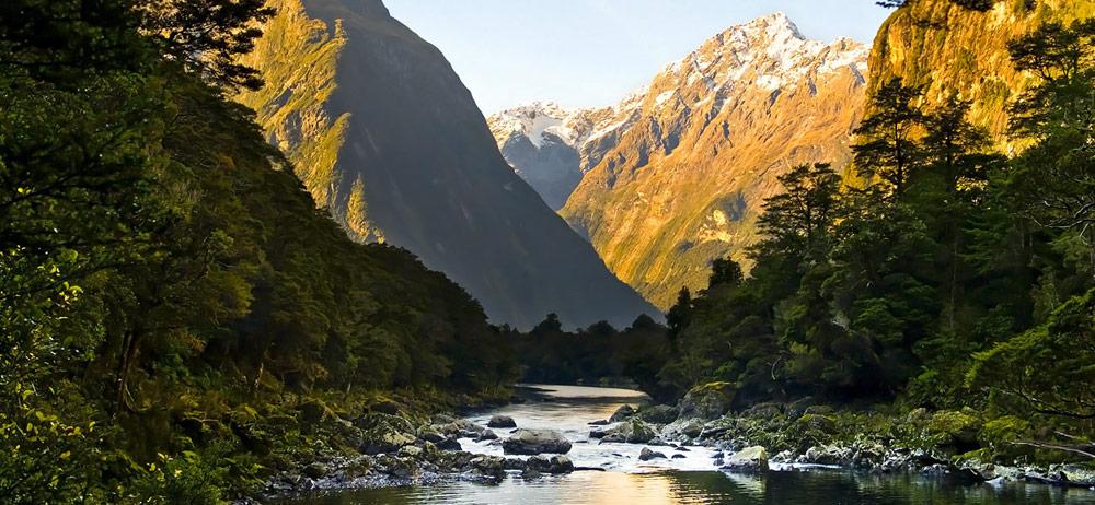 Inner cove New Zealand